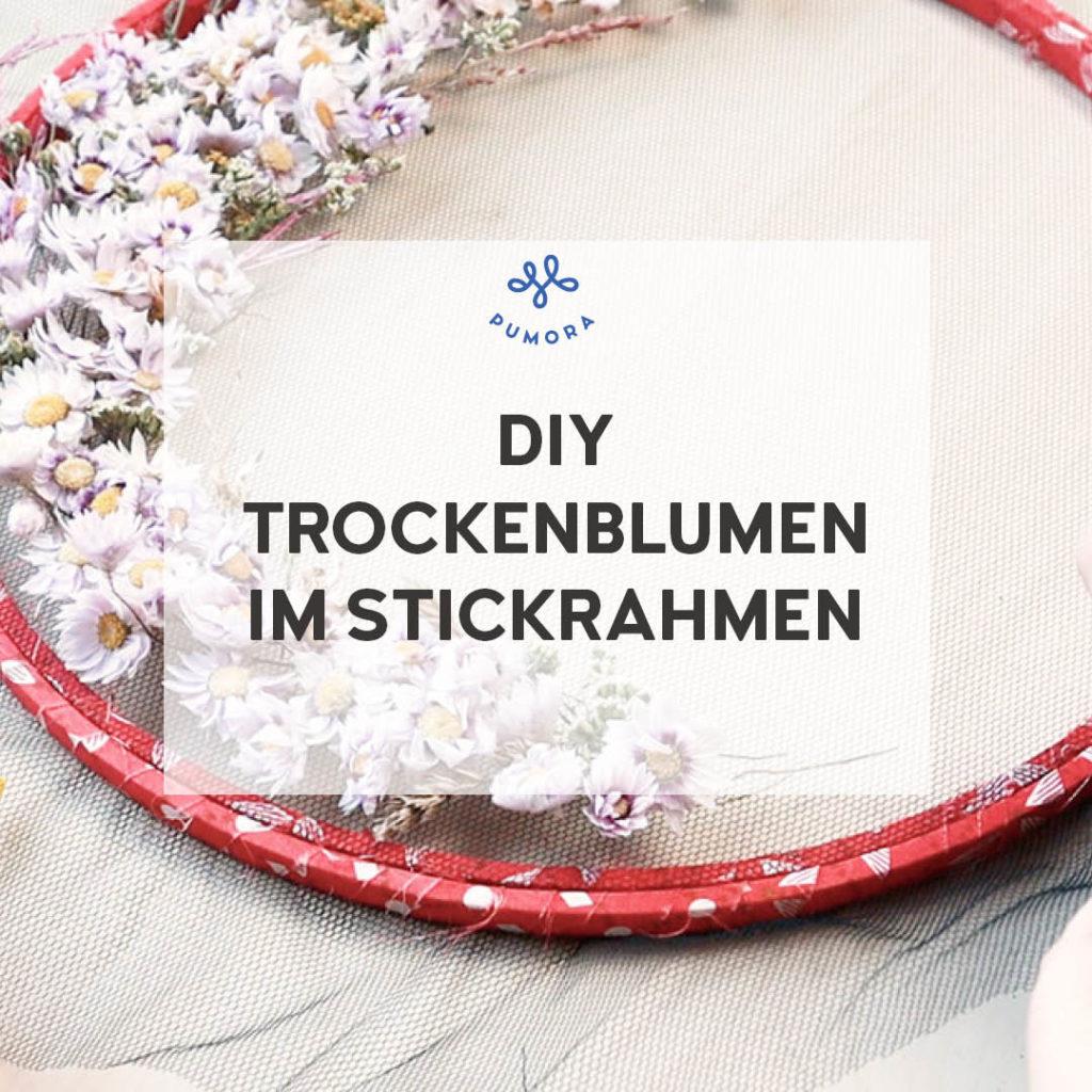DIY Trockenblumen im Stickrahmen mit Tüll